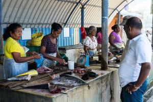 Westfield Guesthouse, Affittacamere  Negombo - big - 14