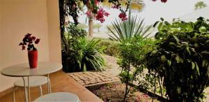 Porto Antigo 2 BeachFront, Апартаменты  Санта-Мария - big - 10