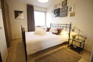 Apartments Marer, Apartments  Trogir - big - 27