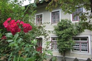 Alte Wirtschaft - Apartment - Hohenlinden