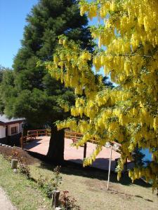 Don Ricardo Mari Mari, Chalets  San Carlos de Bariloche - big - 3
