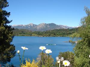 Don Ricardo Mari Mari, Chalets  San Carlos de Bariloche - big - 26