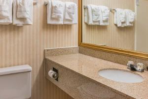 Quality Inn & Suites Detroit Metro Airport, Hotely  Romulus - big - 26