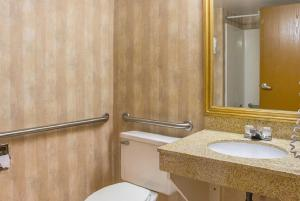 Quality Inn & Suites Detroit Metro Airport, Hotely  Romulus - big - 21