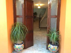 Alexs house, Homestays  Mexico City - big - 1