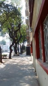 Alojamiento en Narvarte, Ubytování v soukromí  Mexico City - big - 9