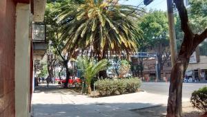 Alojamiento en Narvarte, Ubytování v soukromí  Mexico City - big - 10