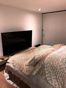 Great room in Polanco, Homestays  Mexico City - big - 4