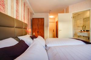 Rhein Neckar Hotel, Отели  Мангейм - big - 32