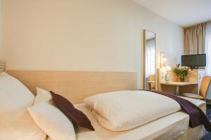 Rhein Neckar Hotel, Отели  Мангейм - big - 4