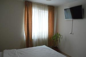 Apartament centru, Appartamenti  Braşov - big - 16