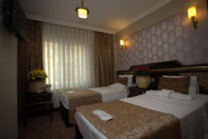 Sultanahmet Park Hotel, Hotely  Istanbul - big - 11