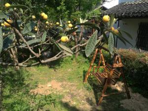 Pure-Land Villa, Ubytování v soukromí  Suzhou - big - 39