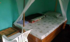 Rwenzori turaco camp