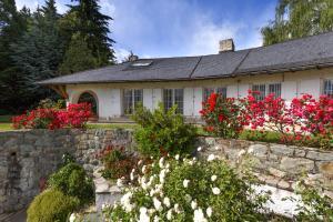 La Gaviota, Case vacanze  San Carlos de Bariloche - big - 1