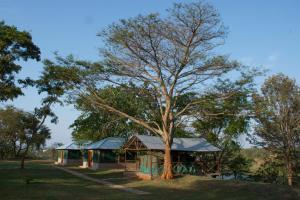 Nile Gardens Campsite
