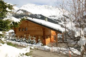 BnB Les Sapins Bleus, Bed and breakfasts  Verbier - big - 32