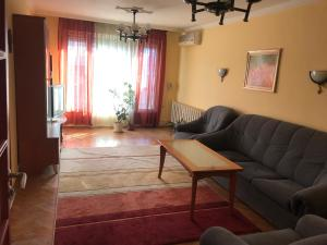 Une image de Fully Furnished Apartment near the heart of Sofia