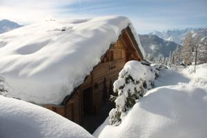BnB Les Sapins Bleus, Bed and breakfasts  Verbier - big - 3