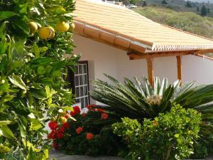 Casitas Rosheli, Apartmány  Los Llanos de Aridane - big - 12