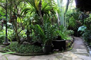 Wisma Ary's, Vendégházak  Yogyakarta - big - 28