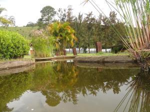 Pousada Solar dos Vieiras, Гостевые дома  Juiz de Fora - big - 67