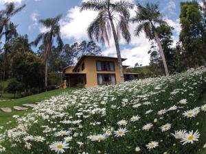 Pousada Solar dos Vieiras, Гостевые дома  Juiz de Fora - big - 59