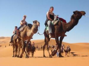 Camel Trekking Bivouac