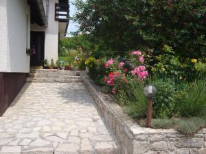 Guest house Jandric, Vendégházak  Drežnik Grad - big - 92
