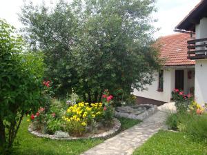Guest house Jandric, Vendégházak  Drežnik Grad - big - 89