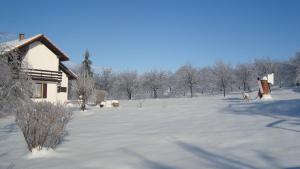 Guest house Jandric, Vendégházak  Drežnik Grad - big - 81