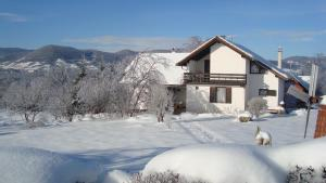 Guest house Jandric, Vendégházak  Drežnik Grad - big - 88
