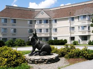 Nearby hotel : Black Bear Inn Conference Center and Suites