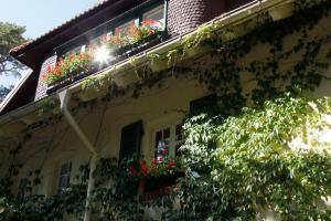 Haus Hubertus, Ferienwohnungen  Ostseebad Boltenhagen - big - 41