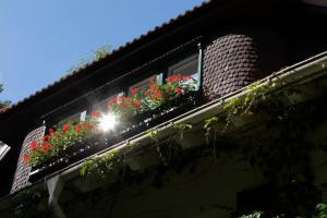 Haus Hubertus, Ferienwohnungen  Ostseebad Boltenhagen - big - 42