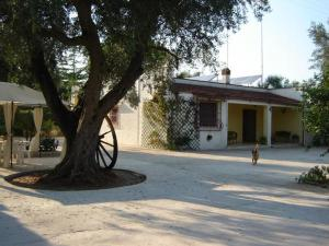 Nearby hotel : B&B Villa Lucia