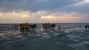 Armarova Ihre Ferienpension, Affittacamere  Cuxhaven - big - 66