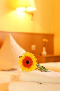 Hotelpension zum Gockl, Penzióny  Allershausen - big - 16