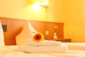 Hotelpension zum Gockl, Penzióny  Allershausen - big - 13