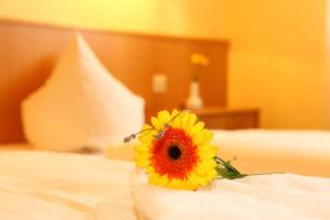 Hotelpension zum Gockl, Penzióny  Allershausen - big - 29