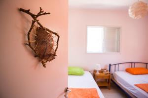 A Picture of Golan Garden Hostel