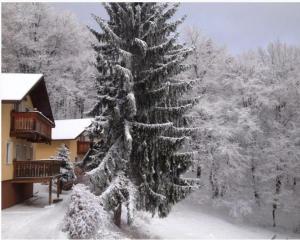 Hotel Inovec