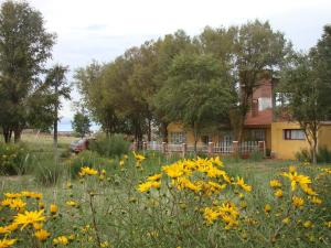 La Candelaria, Locande  La Quiaca - big - 28