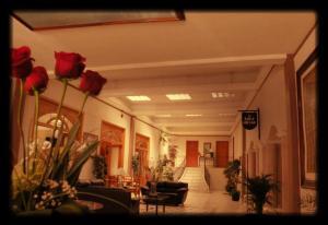 Hotel Condesa
