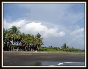 Plumita Pacifica Costa Rica Paradise
