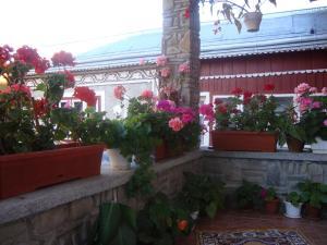 Pensiunea Casa Rodica, Гостевые дома  Гура-Гуморулуй - big - 51