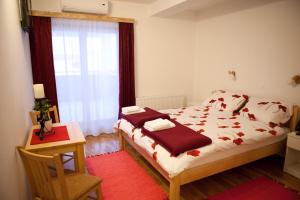 Double Room Pansion Budimir