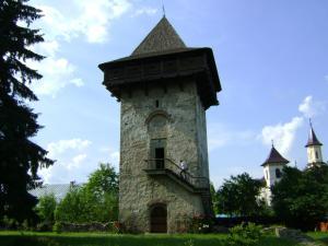 Pensiunea Casa Rodica, Гостевые дома  Гура-Гуморулуй - big - 45