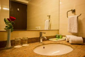 Hotel Classic Diplomat, Hotely  Nové Dilí - big - 6
