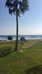 Sandy Beach Villas 21
